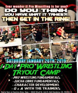 Pro Wrestling Training – Page 2 – Santino Bros  Wrestling